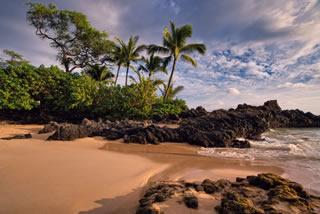 Trip to Hawaii Beach